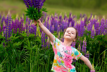 funny girl of preschool age holds a bouquet of purple lupins and dances with them in the meadow