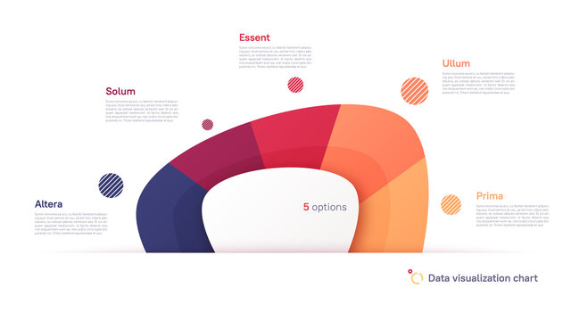 Vector pie chart infographic template in the form of abstract shape divided by five parts