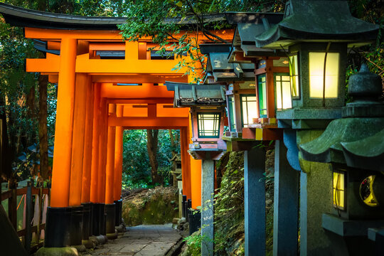 Japan. Temple complex on mount Inariyama. Kyoto. The Fushimi Inari Shrine. Fushimi Inari Taisha Temple. The temple of the thousand gates. Shinto. Mythology Of Japan. Japan's most recognizable landmark