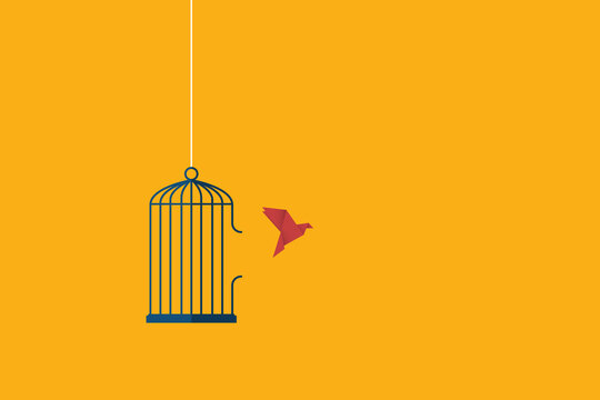 Flying bird and cage. Freedom concept. Emotion of freedom and happiness. Minimalist style.