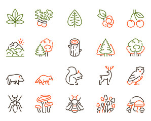Fototapeta Vector color linear icon set of forest objects
