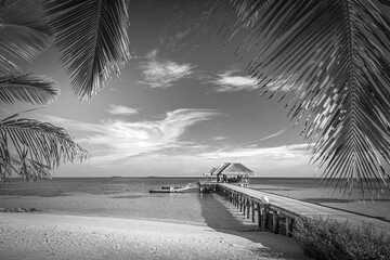 Black and white image of tropical beach. Exotic landscape in abstract black and white process. Luxury summer scenery, artistic view