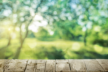 Wall Mural - Wooden table and spring forest background