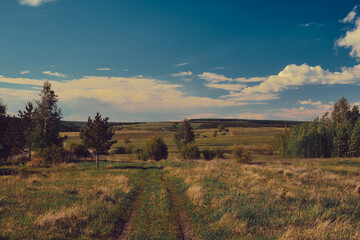 Landscape of central Russia agricultural countryside with  country road. Summer landscape of the Samara valleys. Russian countryside.