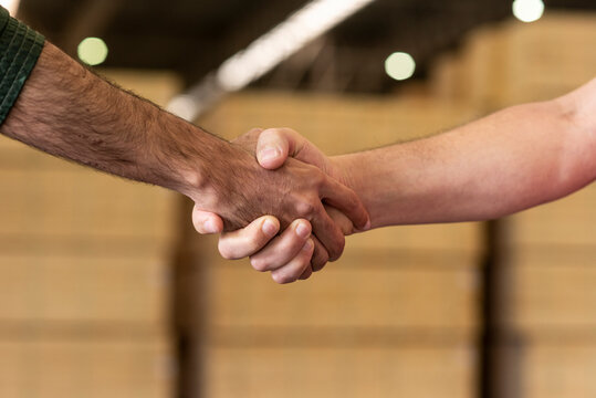 workers handshake at shed factory with wood pile at background