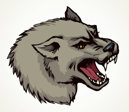 Open mouth. Grin. Vector drawing wolf