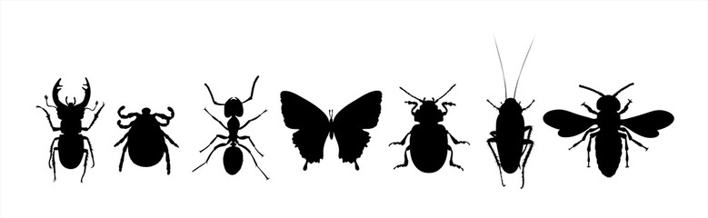 Collection of vector silhouette of animals on white background. Symbol of nature and insect.