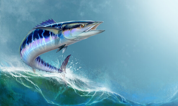 Spanish Mackerel wahoo dark blue fish big fish on background realistic illustration.