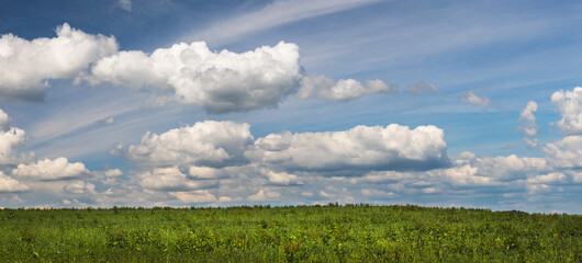 landscape with green field and and blue sky with white clouds