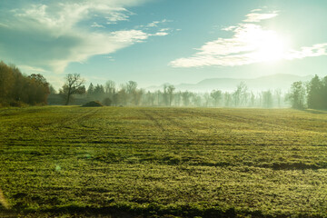 Wall Mural - Sunny morning natural landscape with agricultural fields , Austria.