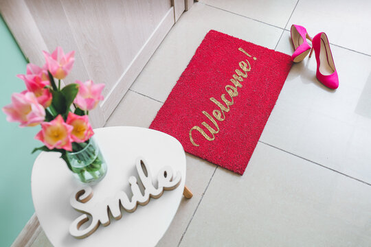 Interior of modern stylish hallway with door mat
