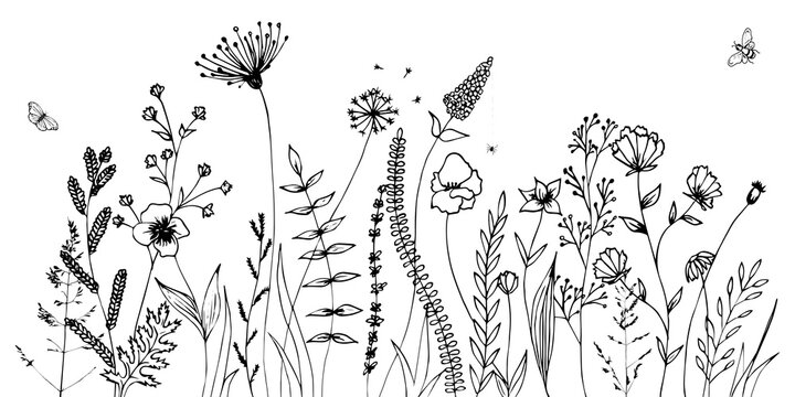 Black silhouettes of grass, flowers and herbs isolated on white background. Hand drawn sketch flowers and insects.