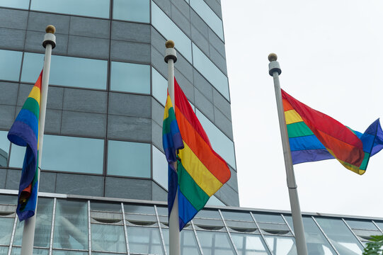 Three flags over LGBT building, minorities, protection and equality