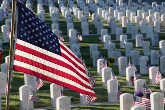 Military Headstones Decorated with Flags for Memorial Day