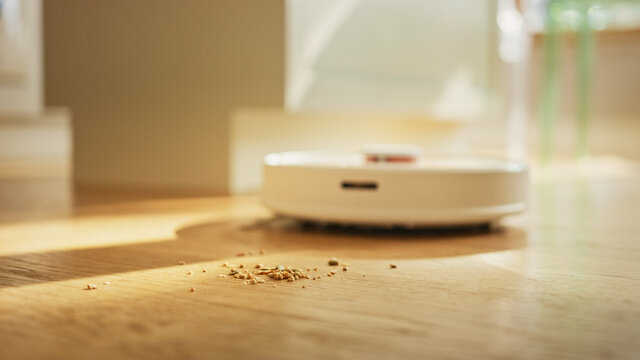 Ground Level Close-up Shot: Effective Robotics Vacuum Cleans Spots Cookie Crumbs on the Hardwood Floor Cleans everything Automatically. Internet of Things Automated Gadget.