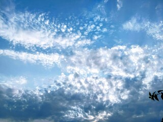 Pictures of clouds.