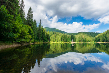 .reflection in the water. lake among the forest. beautiful nature landscape in summer. sunny weather with puffy clouds on the sky