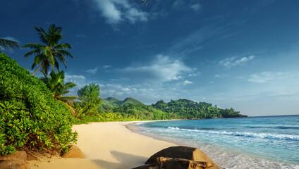 Fotomurales - beach at Mahe island,  Seychelles
