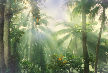 Foto auf Leinwand Olivgrun Jungle
