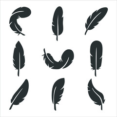 Feather of bird graphic icon. Feather sign isolated on white background. Symbol of lightweight. Vector illustration
