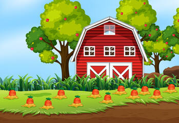 Farm scene in nature with barn and carrot farm