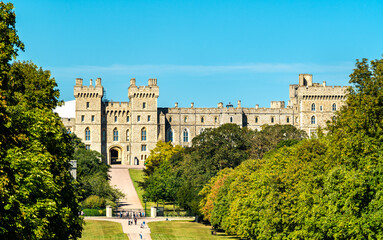 View of Windsor Castle from the Long Walk, England
