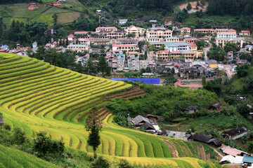 Autocollant pour porte Les champs de riz Terraced rice paddy field for agriculture and travel destination of green life.