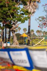 Ocean Beach Dusty Rhodes Park