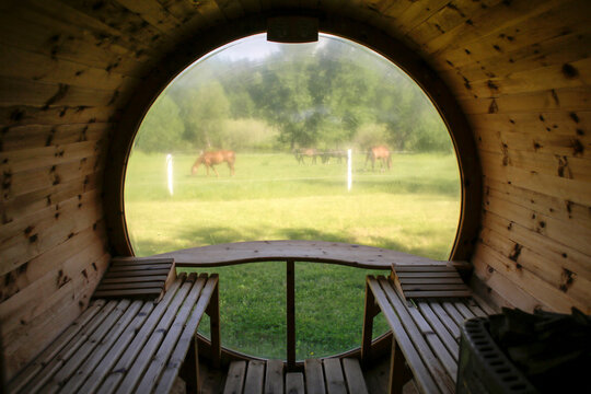 Horses are seen grazing on the grass through the window of an outdoor sauna at the 4rest Camp in Czastkowo