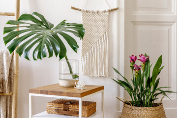 Trendy composition of home garden interior with wooden coffee table, plants and flowers, ladder, rattan decoration, macrame, personal accessories, white wall in stylish home decor.
