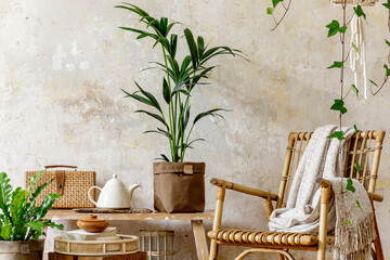 Neutral composition of living room interior with rattan armchair, wooden bench, a lot of tropical...