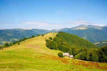 Wall Mural - green meadow scenery on the hill. fluffy clouds on the blue sky above the distant mountain. bright summer weather. carpathian rural adventure concept