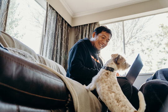 Asian man work from home by laptop with his dog in living room.