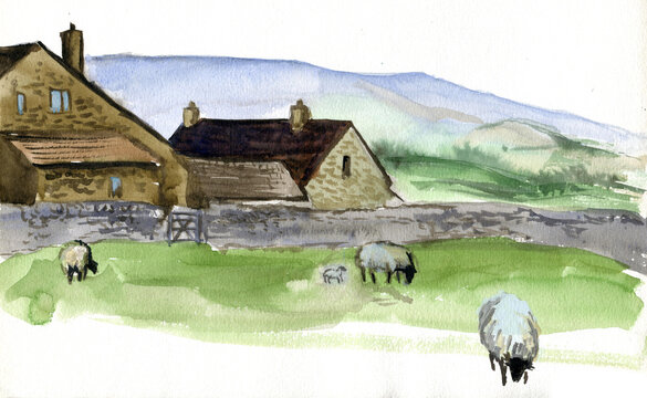 Yorkshire farm and sheep with lamb at the meadow, England. Watercolor hand drawn landscape. Touristic view for cards, booklets or other design.