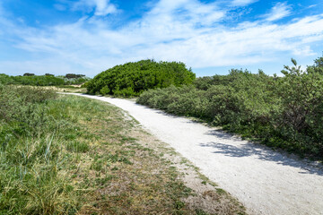 A shell path through the Katwijk dunes on a sunny day in the Netherlands.