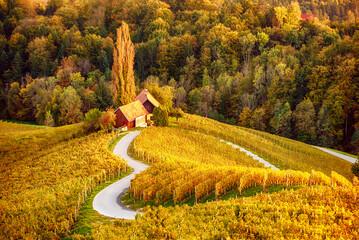 Heart shaped wine road in Slovenia