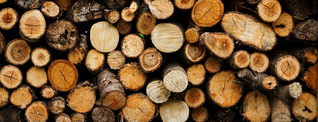 Firewood background material. 薪の背景素材
