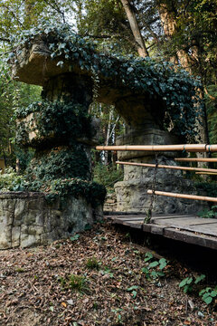 Suspension bridge with bamboo railing in a green summer park