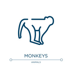 Monkeys icon. Linear vector illustration from in the zoo collection. Outline monkeys icon vector. Thin line symbol for use on web and mobile apps, logo, print media.