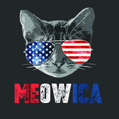 4th Of July Shirt Meowica American Flag Cat T shirt