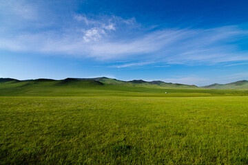 Scenery of the Mongolian meadows with azure blue sky, lush grass fields and green small hills on the back , Mongolia