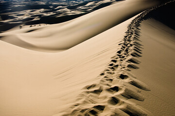 Footprints in the Gobi Khongoryn Els, on the top of one of the sand dunes, Gobi, Mongolia