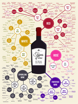 Types of Wine Infographics, poster for winery, restaurant, bar or home decor