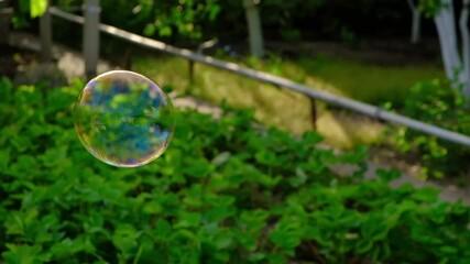 Papier Peint - soap bubbles into the sunset slow motion