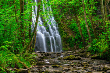Beautiful cascade in the forest