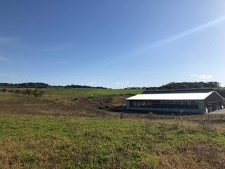 牧場と青空