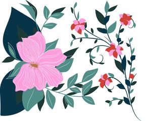 Tropical flowers, flowers, fashionable colors, leaves, nature, bouquet, floral composition