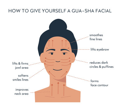 Infographic of gua sha scraper facial yoga. Massage direction for jade roller. Acupuncture anti-aging traditional chinese medicine self care method. Vector flat illustration on white background..