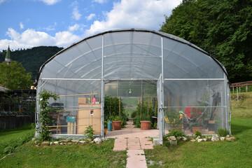 Obraz Serra ft0206_0520 Greenhouse Szklarnia ogrodnictwo - fototapety do salonu