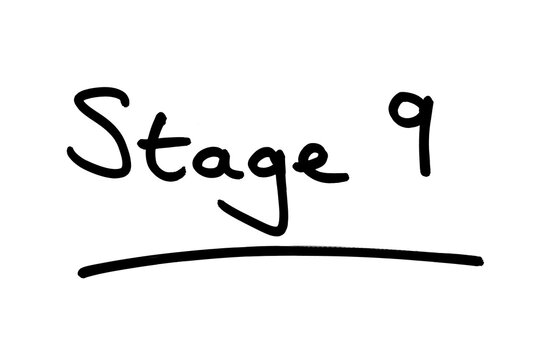 Stage 9